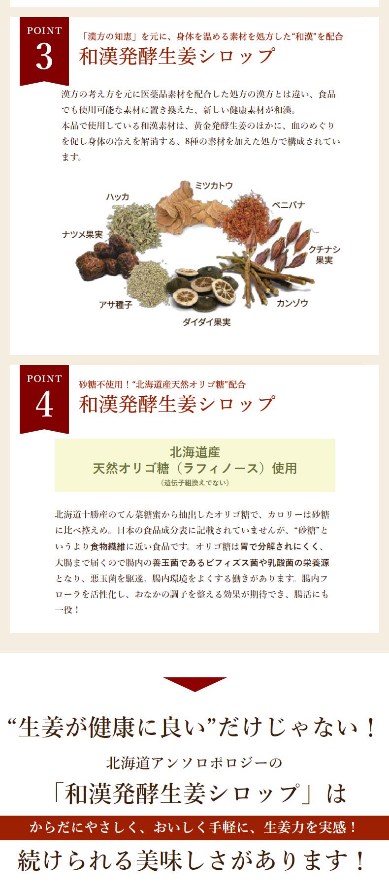 和漢発酵生姜シロップのここがすごい