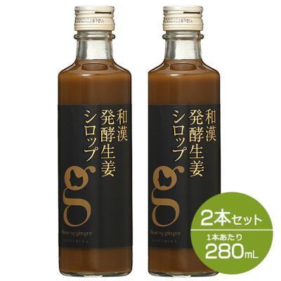 【セット】北海道アンソロポロジー 和漢発酵生姜シロップ 280mL 2本セット 【会員ランクに関わらず一律P10倍】 雑貨