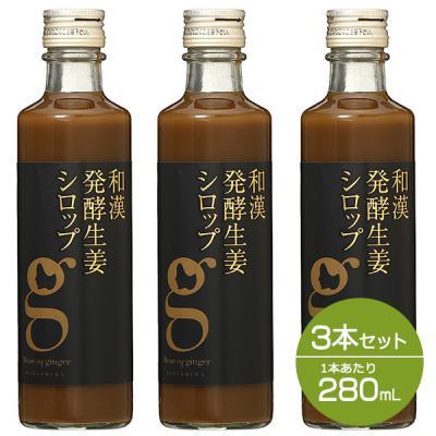 【セット】北海道アンソロポロジー 和漢発酵生姜シロップ 280mL 3本セット 【会員ランクに関わらず一律P10倍】 雑貨
